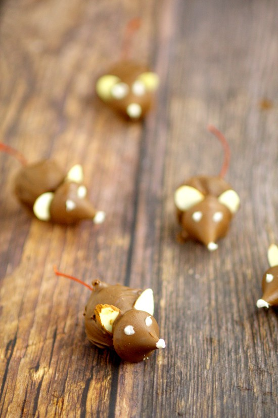 These fun Chocolate Cherry Christmas Mice made from chocolate covered cherries with almond slices and Kisses, are adorable Christmas candy treats recipe and a great addition to your dessert table. These will be so cute next to all the Christmas cookies!