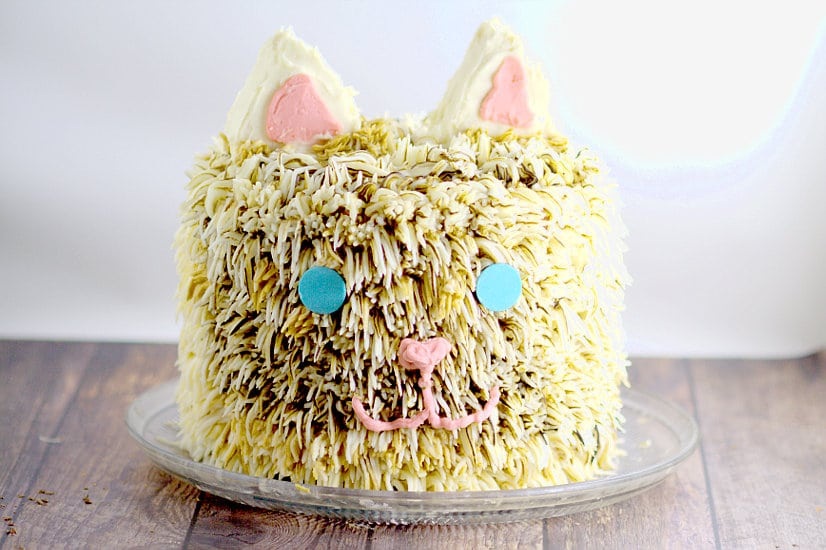 Kitty Cat Birthday Cake Tutorial An Amazing But Simple That