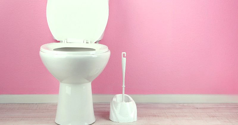 Tips to Help You Clean Your Bathroom Faster - Cleaning the bathroom is probably the most dreaded household chore. But it needs to be done, not just to keep your bathrooms looking nice, but to keep them safe and germ free. However, just because it needs to be done doesn't mean it has to take forever! Take a look at these 5 Tips to Help You Clean Your Bathroom Faster! Yes, please! Anything to make cleaning the bathroom easier!