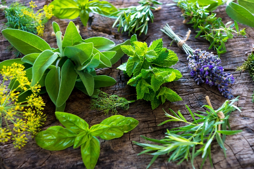 10 Ways Growing Your Own Herbs Saves You Money - Herbs are incredibly useful in cooking, crafting, beauty products, and more, but they can be costly. Check out these 10 ways growing your own herbs saves you money and start saving now! Frugal Living | Save Money