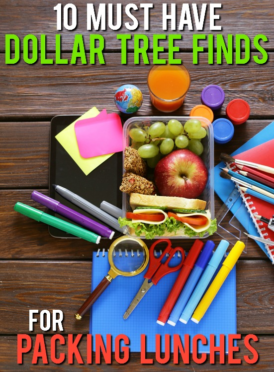 10 Dollar Tree Items Perfect for Packing Lunches - Make lunch packing quick, easy, and most of all cheap, with these 10 Dollar Tree Items Perfect for Packing in Lunches for a fun and yummy school lunch for kids! Cheap back to school lunch ideas