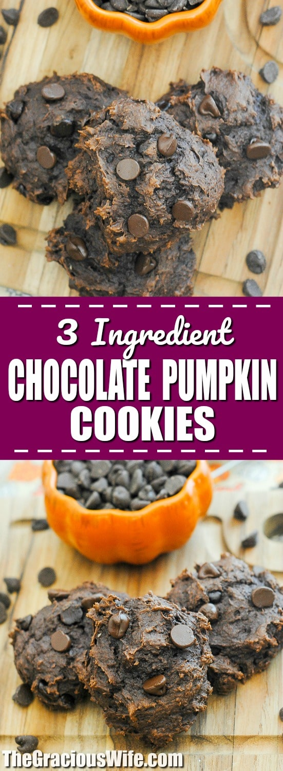 Chocolate Pumpkin Cookies Recipe - Make these rich and soft 3 ingredient Chocolate Pumpkin Cookies in just 25 minutes to satisfy both your decadent chocolate and smooth pumpkin cravings! These sound so good! I love pumpkin and chocolate!